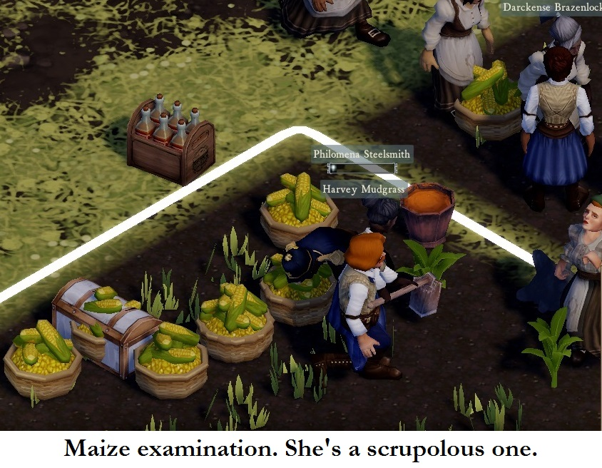 40 inspecting the maize.jpg