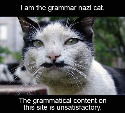Grammar Nazi Cat.jpg